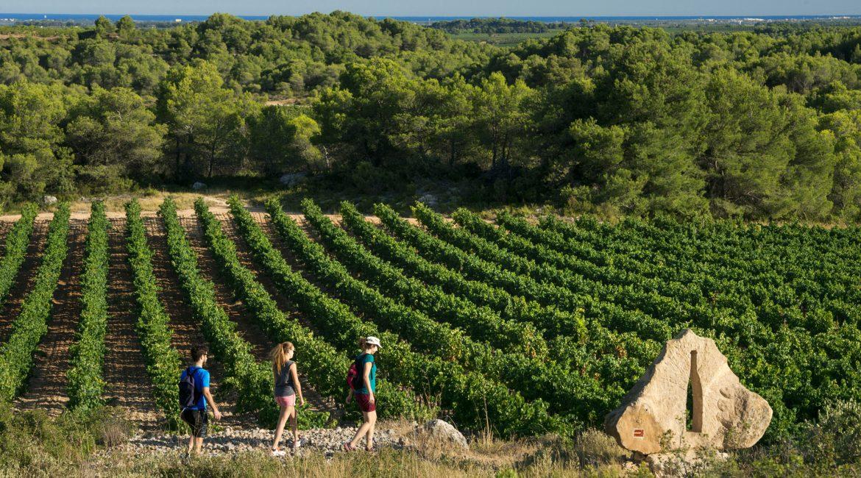Spécial vacances de la Toussaint à Agde